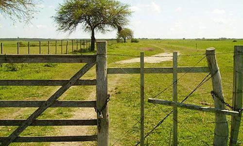 rurales-uruguay A