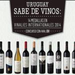 Dos excelentes opciones de vinos Uruguayos