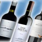 Disfruta los mejores vinos de Uruguay