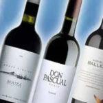 ¿Cómo son las mejores bodegas de vino en Uruguay?